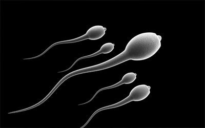 Мужская сперма улучшается с каждым сексом